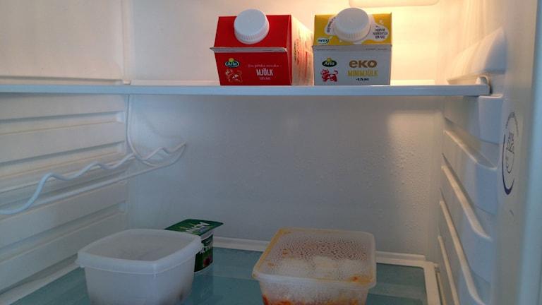 Kylskåp med mjölk och byttor. Foto: Ann-Sofie Ottosson/Sveriges Radio