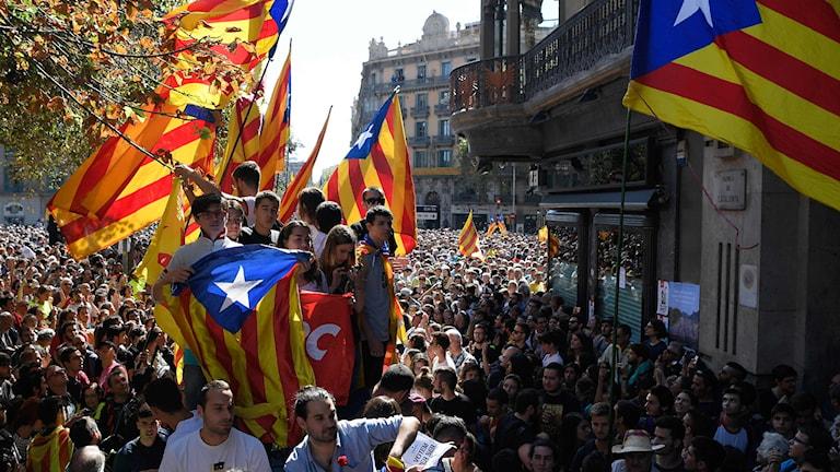 Människor på gata med flaggor.