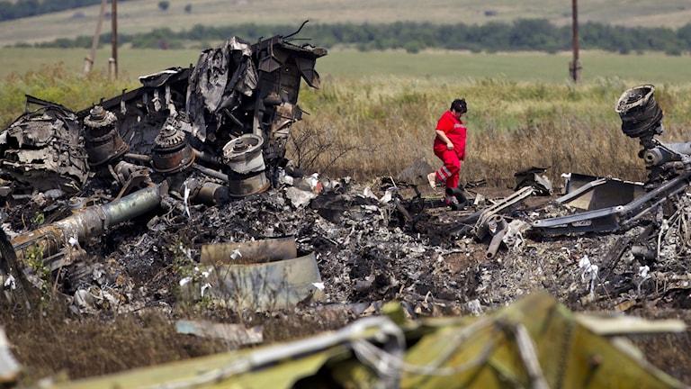 En ukrainsk räddningsarbetare går omkring bland vrakdelarna efter flygplanet MH17 i östra Ukraina. Foto: Vadim Ghirda/AP/TT