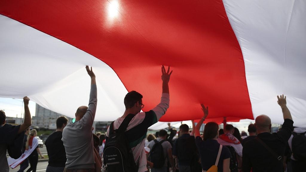 Belarus Protester