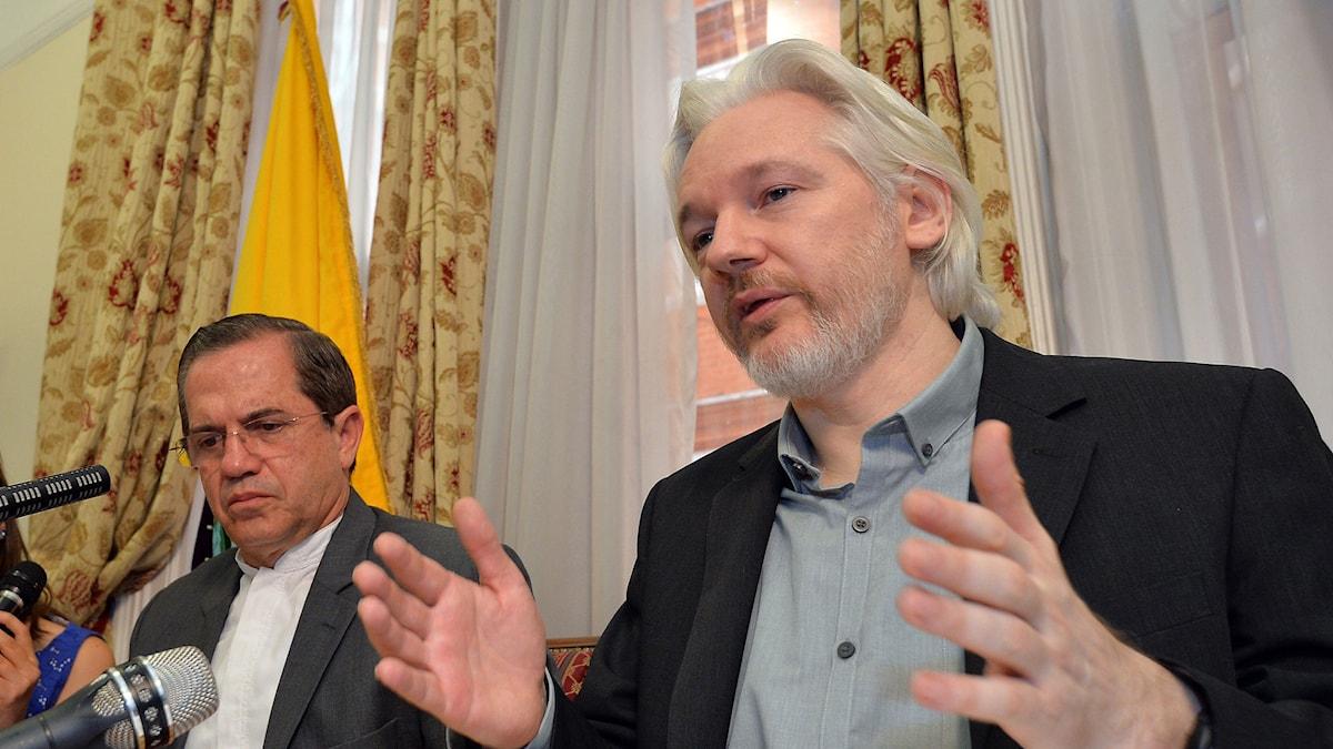 Wikileaks grundare Julian Assange Foto:  John Stillwell/TT.