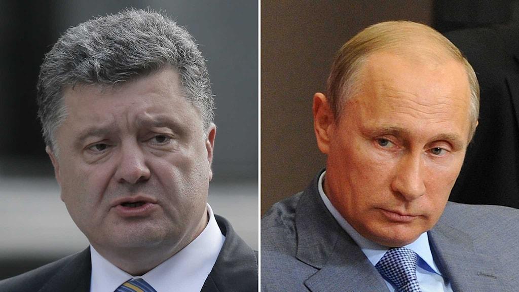 Ukrainas president Petro Porosjenko och hans ryske kollega Vladimir Putin.