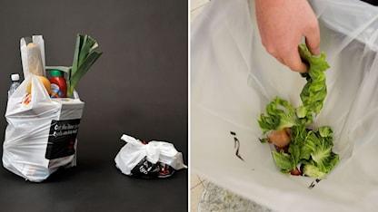 Bild på matkasse och sopkasse samt en person somkastar sallad i soporna. Foto: Lars Pehrson och Heiko Junge/TT