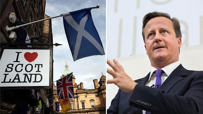 David Cameron, Skottland