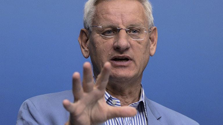 Carl Bildt. Foto: Maja Suslin/TT.