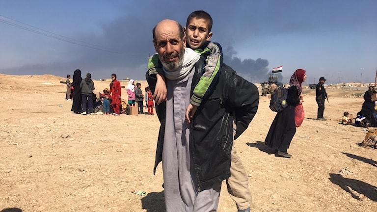 Människor flyr från Mosul