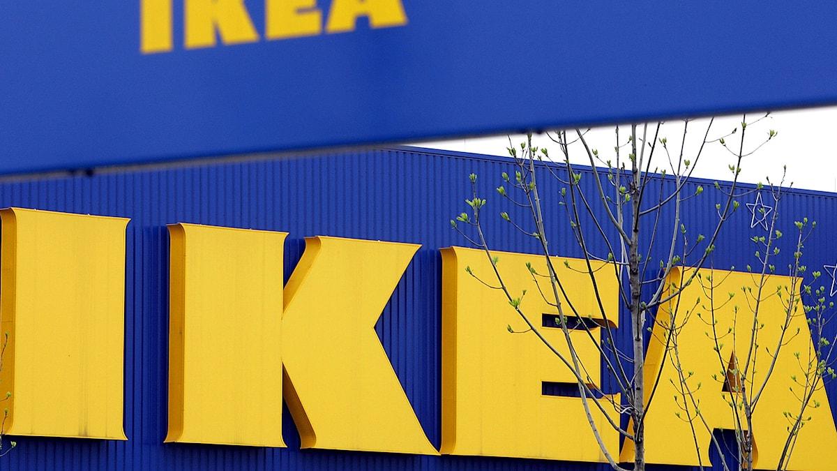 Ikea logotyp. Foto: Frank Augstein/TT.