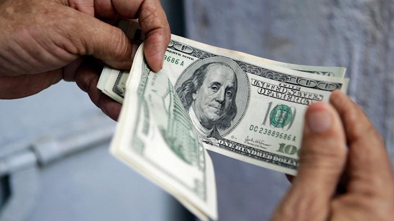 Det tar i snitt mer än 45 år för någon att bli dollarmiljardär. Foto: TT
