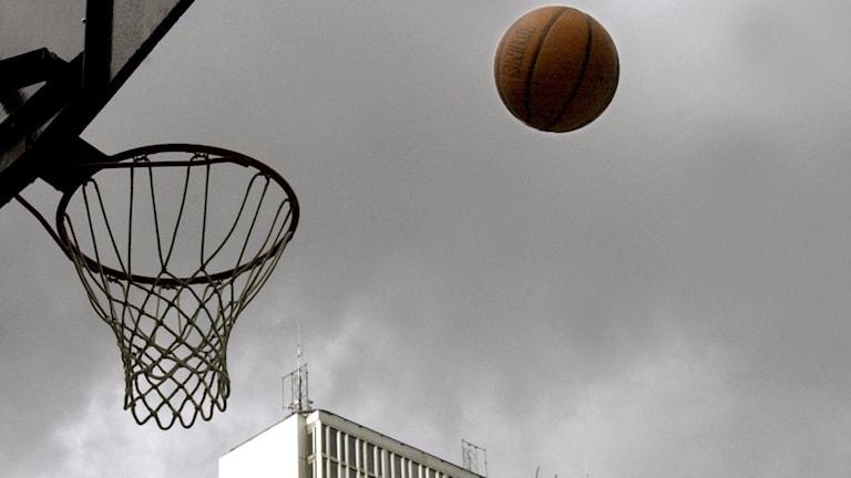 Basketboll och korg. Foto: TT