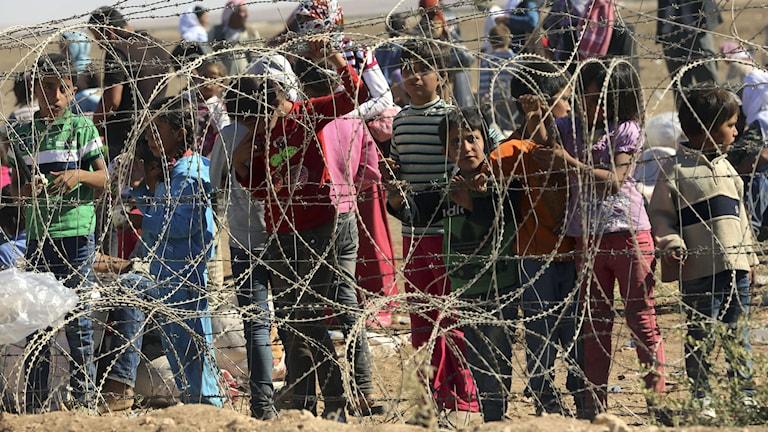 Flytingar väntar intill gränsen till Turkiet. Foto: Burhan Ozbilici/TT.