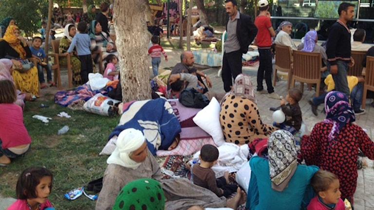 Mänger av flyktingar har samlats i den turkiska gränsstaden Suruç.