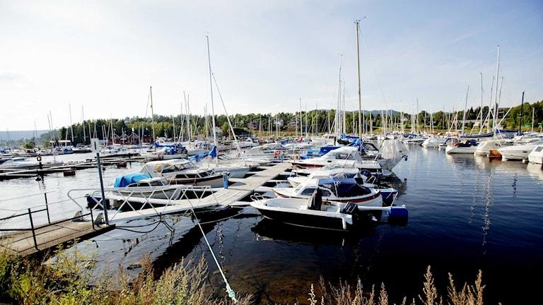 Den fina sommaren fick många att köpa ny båt.