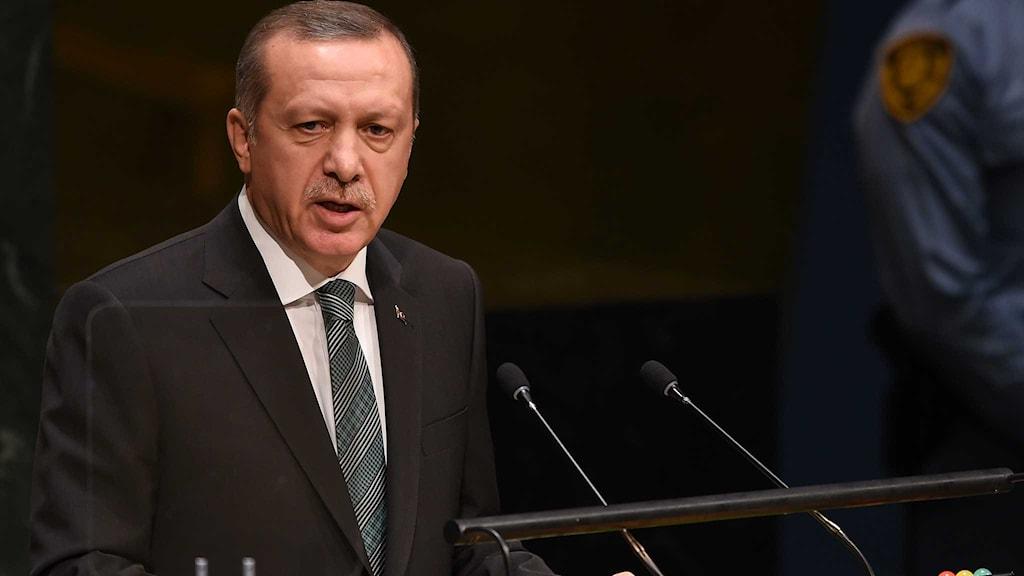Turkiets president Recep Tayyip Erdogan. Foto: Don Emmert/TT.
