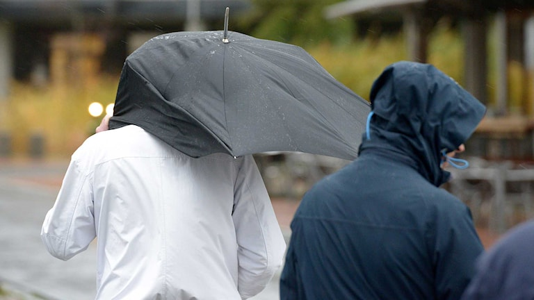 Två personer med ett paraply är ute och går i kraftig blåst. Foto: Johan Nilsson/TT.