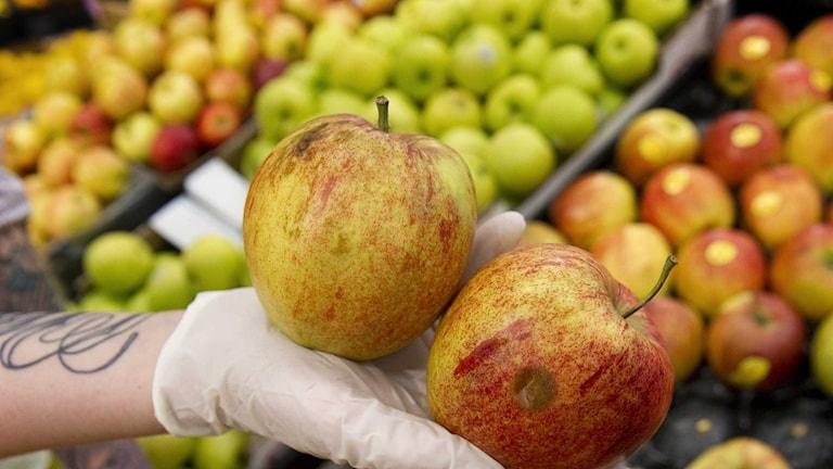En person håller två röda äpplen i handen vid fruktdisken i en affär. Foto: Fredrik Sandberg/TT.