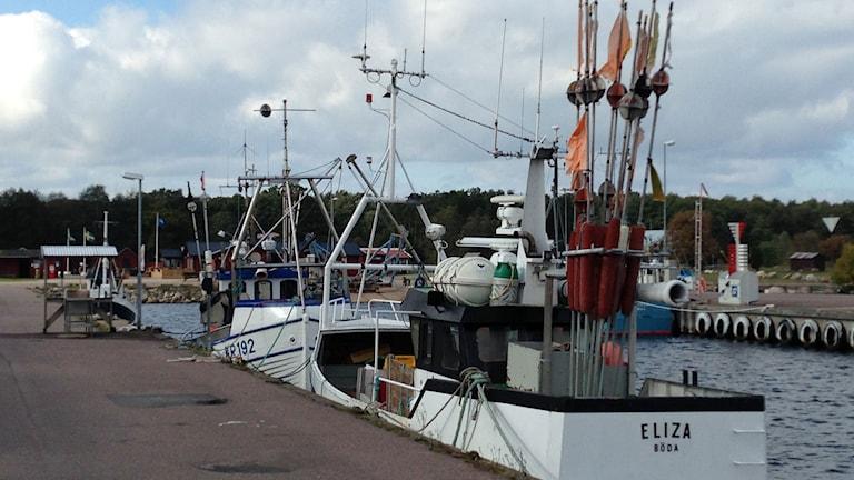 Fiskebåtar i Böda hamn på Öland. Foto: Annika Digréus/Sveriges Radio.