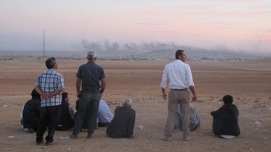 Striderna i Kobane i Syrien följs från den turkiska sidan av gränsen. Foto: Katja Magnusson/Sveriges Radio.