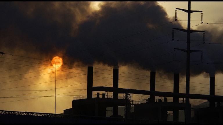Trots vitt skilda viljor har EU-ledarna enats om nya klimat- och energimål för EU. Uppgörelsen innebär att utsläppen av växthusgaser ska minska med 40 procent till 2030 och att andelen förnybar energi samtidigt ska uppgå till 27 procent och att energieffektiviseringen ska vara 27 procent. Men miljörörelsen tycker att det är för lite. Foto: AP Photo / TT.