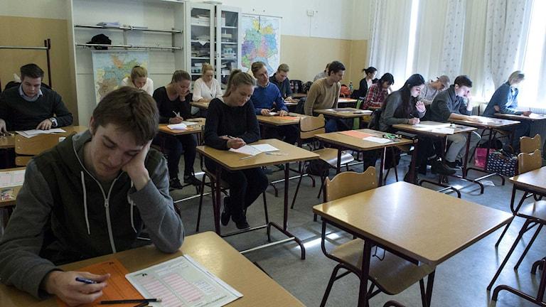 Personer som skriver högskoleprov. Foto: Bertil Enevåg Ericson/TT.