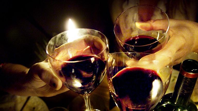 Vin, vinglas, vinflaska. Foto: David Magnusson/TT.