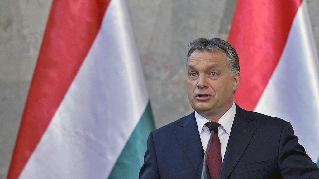 Ungerns premiärminister, Viktor Orban. AP Photo / MTI Szilard Koszticsak / TT.