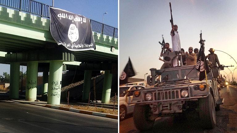 Beväpnade män från den sunnimilitanta gruppen Isis drar genom en huvudgata i centrala Mosul i norra Irak. Foto: TT