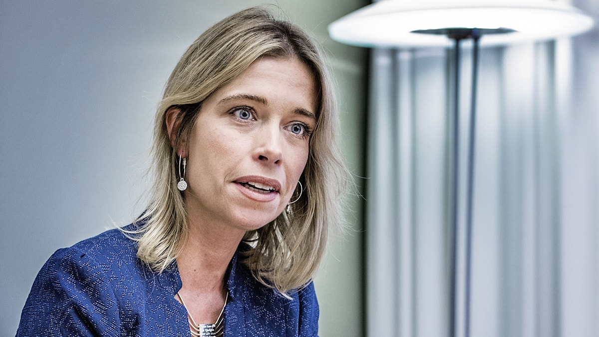 Socialförsäkringsminister Annika Strandhäll (S). Foto: Tomas Oneborg/TT.