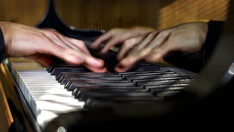 Tonsättare skapar på piano. Foto: Dan Hansson/TT.
