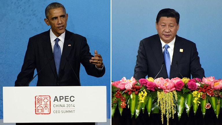USA:s president Barack Obama och Kinas president Xi Jinping på Apec:s toppmöte. Foto: Wang Zhao/ TT.