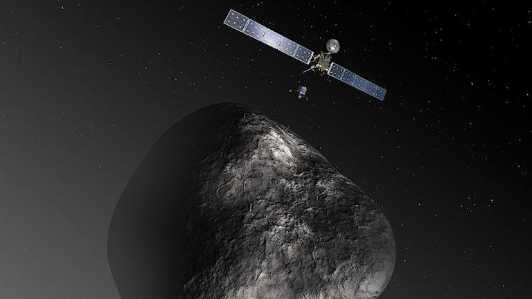 En illustration över hur Rosettas landare färdas ned mot kometen. Bild: ESA/ TT.