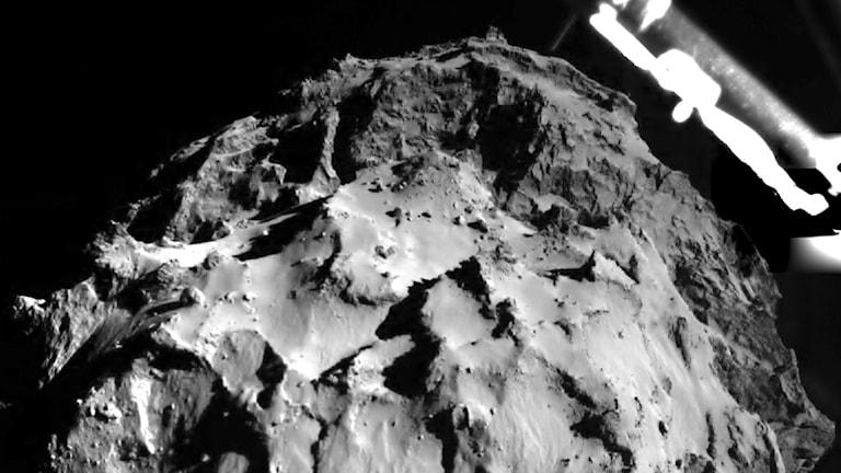 Rosettas landare Philae