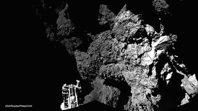 Första bilden av Philae på kometens yta. Foto: ESA