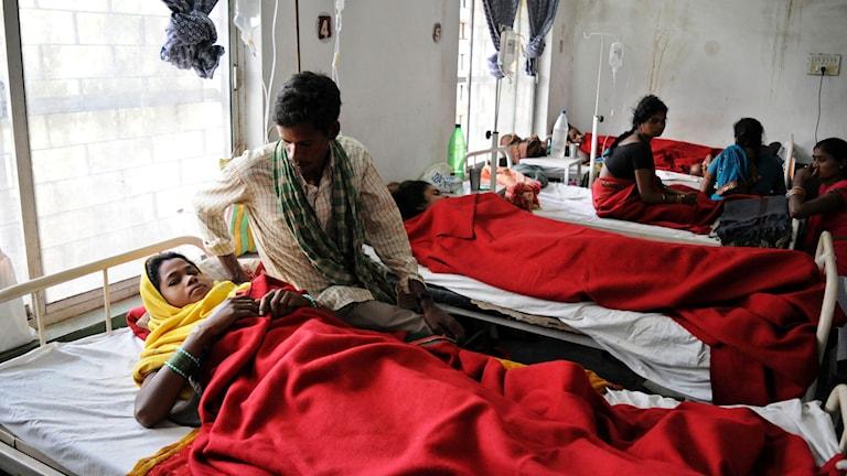 Många kvinnor som massteriliserades vårdas nu på ett sjukhus i Bilaspur. Foto: Ap/ TT.