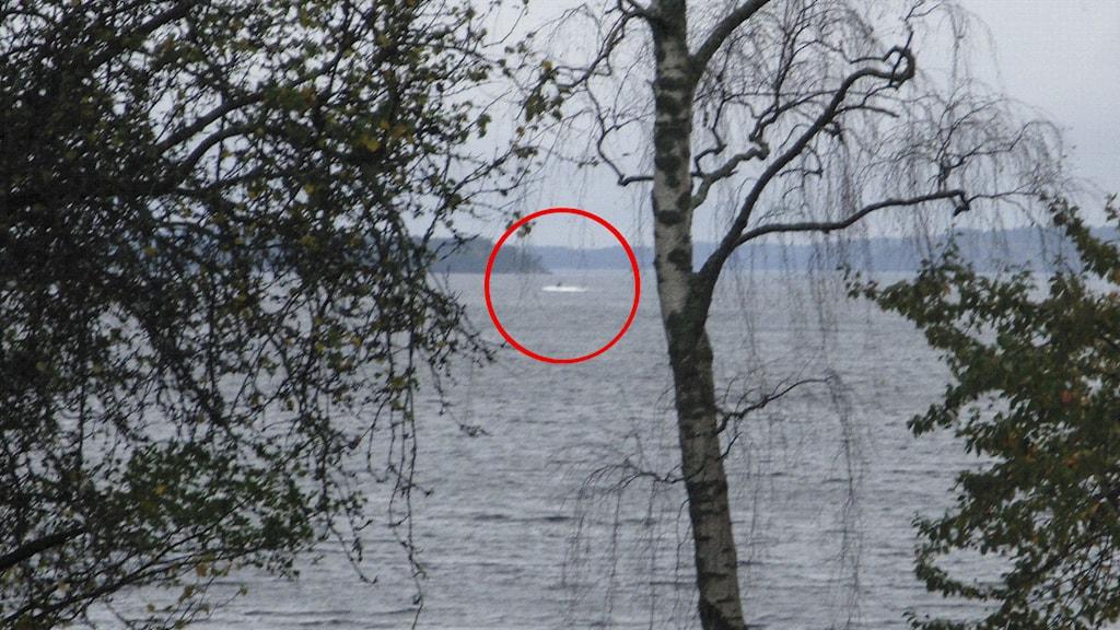 Amatörbild av den misstänkta ubåten. Foto: Försvaret
