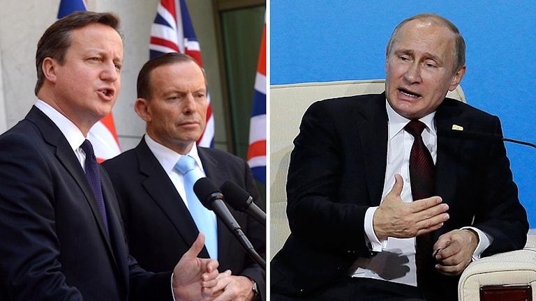 David Cameron, Storbritanniens premiärminister bredvid Australiens motsvarighet Tony Abbot, Rysslands president Vladimir Putin. Foto: TT