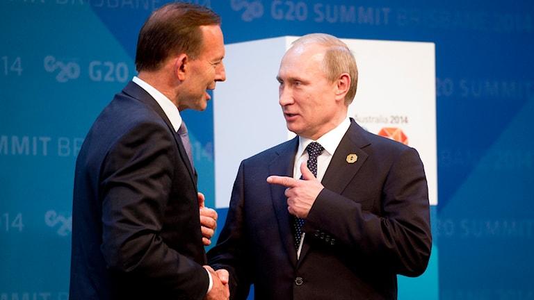 Australiens premiärminister Tony Abbot skakar hand med Rysslands president Vladimir Putin under G20-mötet i Brisbane. Foto: TT