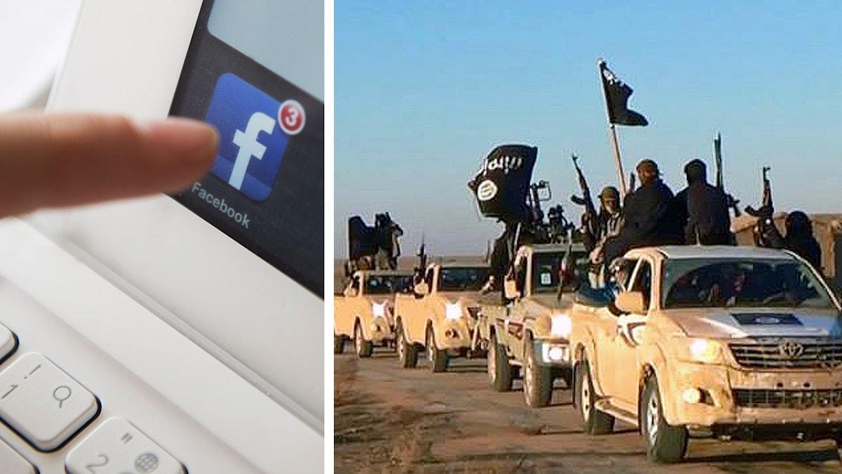 Islamiska staten, IS, rekryterar på sociala medier. Foto: TT
