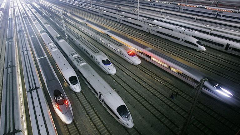 Höghastighetståg i Kina. Foto: AP/TT