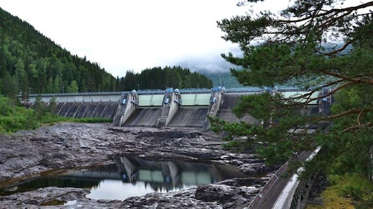 Wasserkraft ist mit die wichtigste Energiequelle in Schweden (Foto: Marie Wenger/Sveriges Radio)
