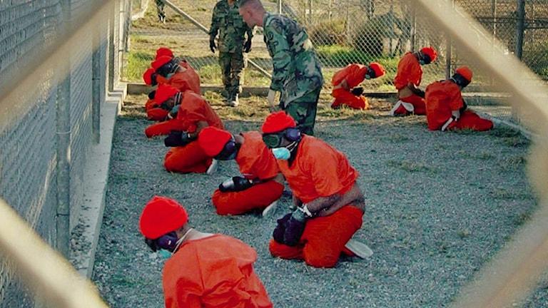 Fångar i USA:s fånglänger på Kuba. Foto: Shane T.McCoy/TT.
