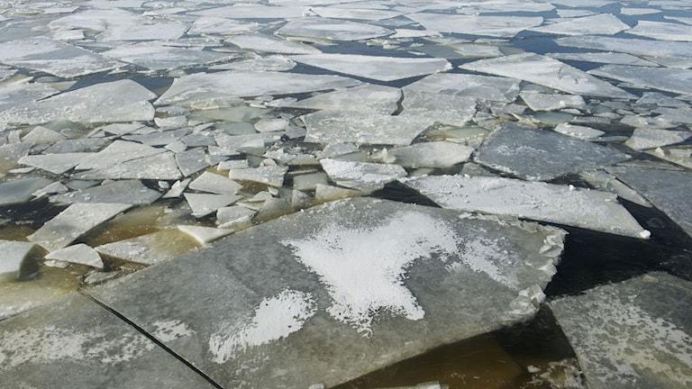 Havsvatten, Östersjön, vinter