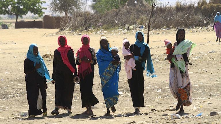 En grupp kvinnor i Darfur i västra Sudan. Foto: Ashraf Shazly/TT.