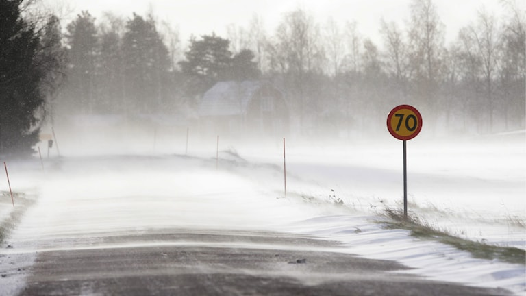 Snö över landsväg. Foto Fredrik Sandberg/TT.