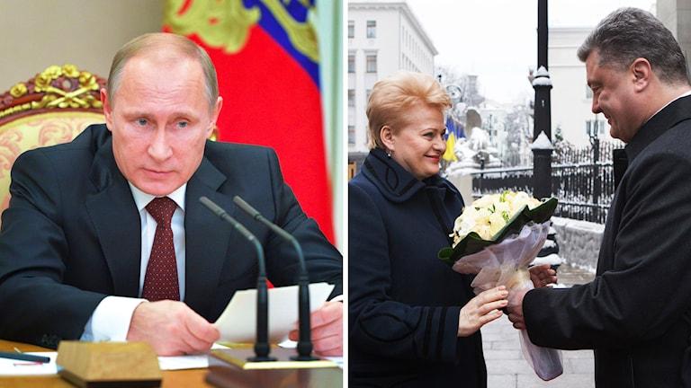 Ryske presidenten, Vladimir Putin (t.v), och Litauens president Dalia Grybauskaite tar emot blommor av Ukrainas president Petro Porosjenko. Foto: TT