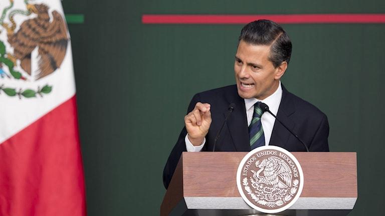 Mexikos president Enrique Peña Nieto. Foto: Eduardo Verdugo/TT.