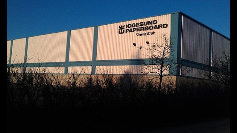 Iggesund paperboard. Foto: Christian Höijer / Sveriges Radio
