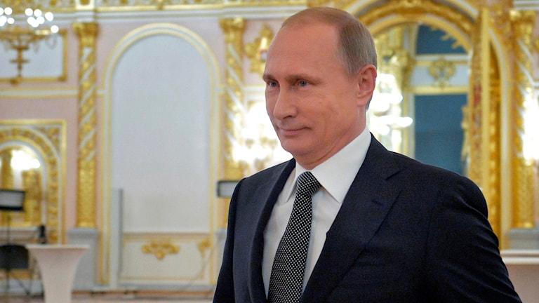 Vladimir Putin. Foto: TT