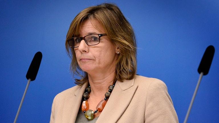 Isabella Lövin. Photo: TT
