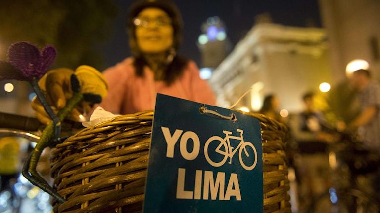 Klimatmötet i Lima. Foto: EITAN ABRAMOVICH/TT