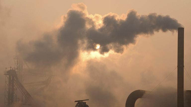 Klimat, miljö, rök
